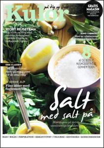 Salt_forside-page-001